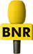Improve Your Business English - BNR